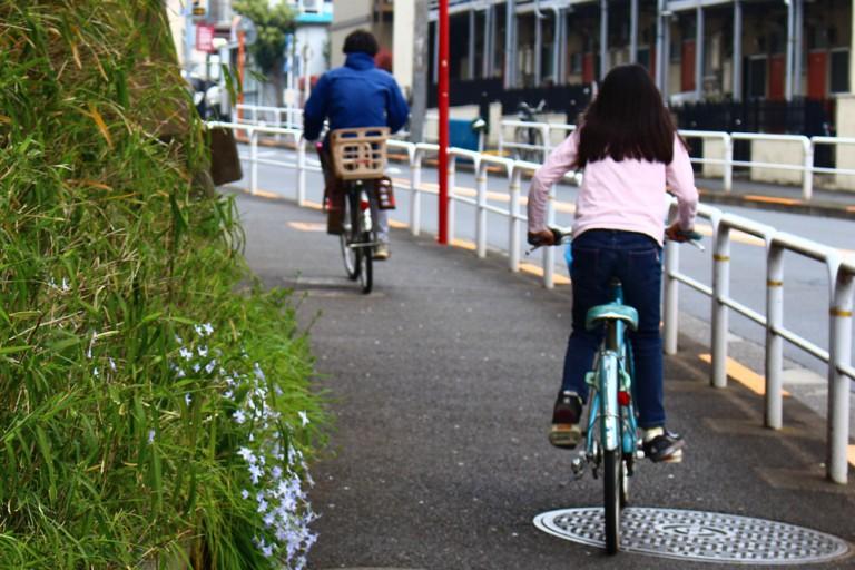 自転車、摘発2回で講習 信号無視など危険行為対象に