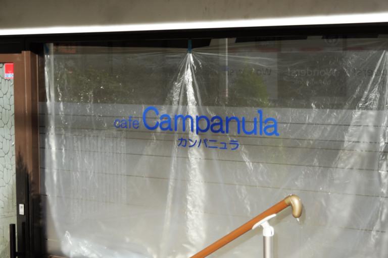 campanula2