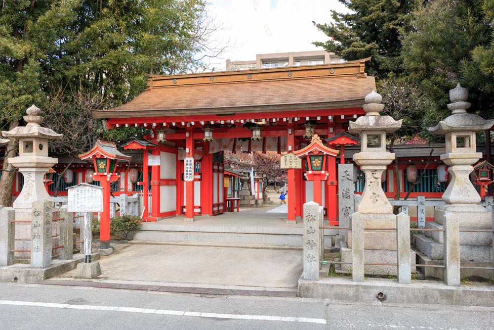松山神社梅