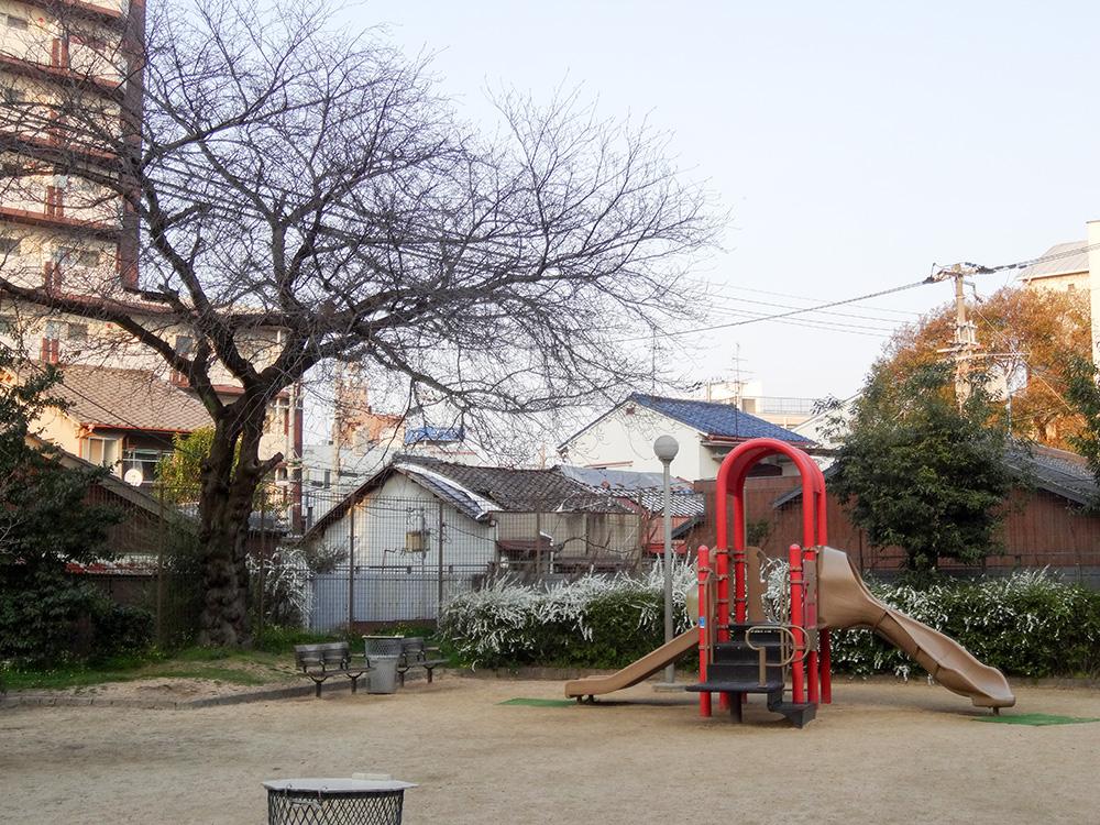 淡路4公園桜