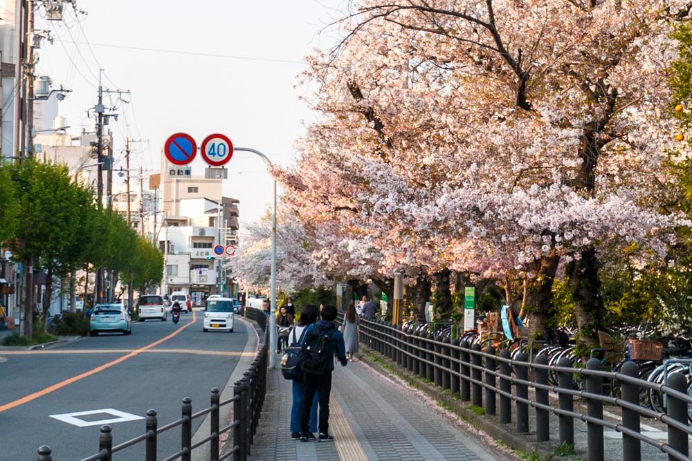 桜東淀川駅
