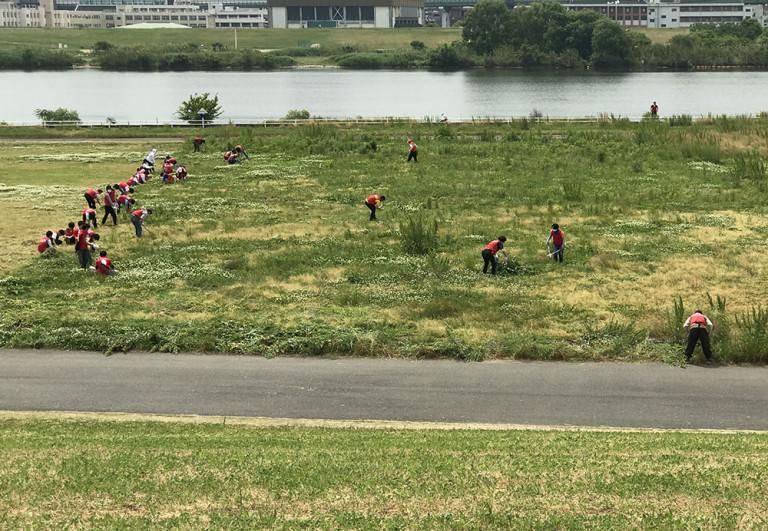 淀川の水でコーヒーを飲もう!&【照らせひがよど祭り】開催に向けた第1回草刈りご協力お願いします!イベント