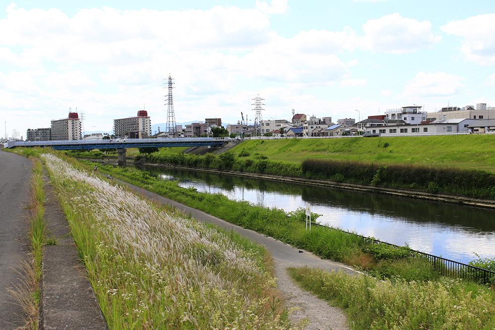 神崎川の堤防