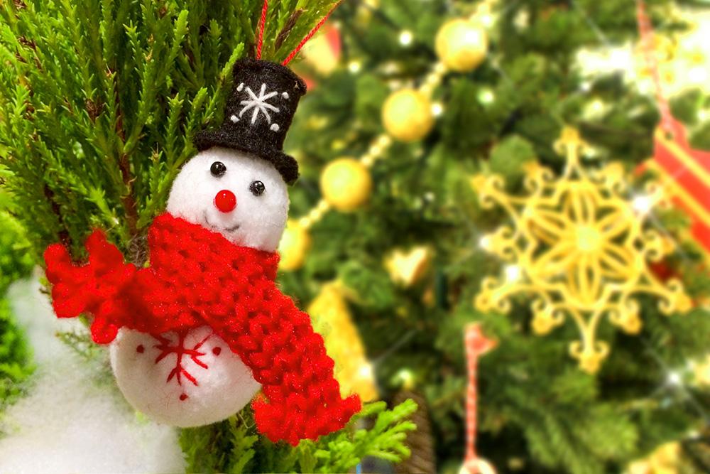 クリスマス 写真AC