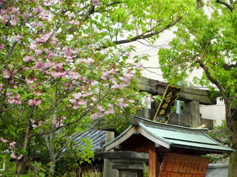 大隅神社春祭り