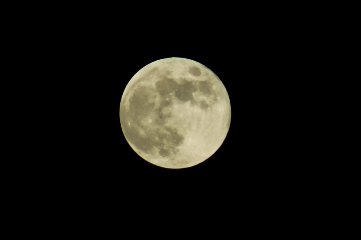 今日 の 月 は 何 ムーン